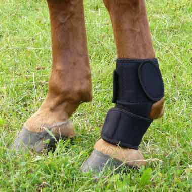 Magnetic Therapy Fetlock Wraps Pair Fmbs Therapy Systems
